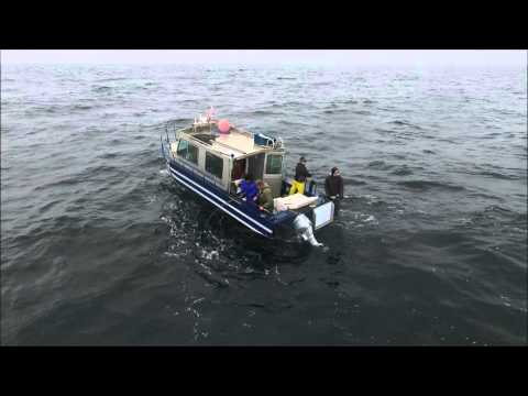 Fishing Prince Rupert With Deep Spring Charters