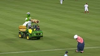 Phanatic uses hot dog cannon against pig