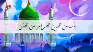 صحيح البخاري - باب من الدين الفرار من الفتن (حديث رقم 19)