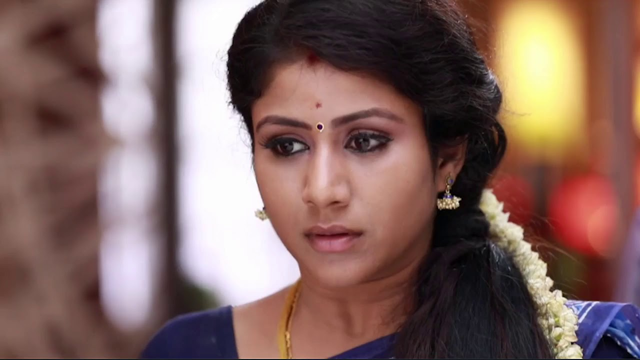 Raja Rani Serial Upcoming Episodes28 to 01 09 17 Review ...