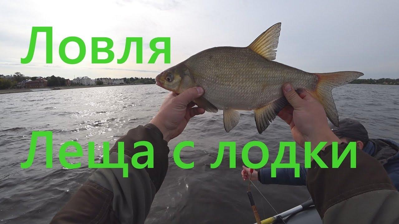 Ловля леща с лодки на бортовые удочки / Как поймать леща с лодки / Снасти для ловли леща