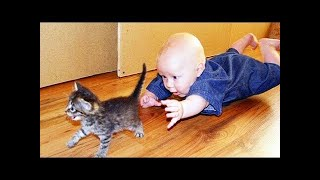 Baby and Cats Playing Together     Funny Baby and Pets Moments #Top10