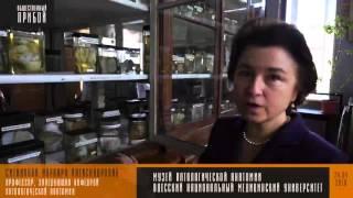 видео Музей анатомии человека в Одессе