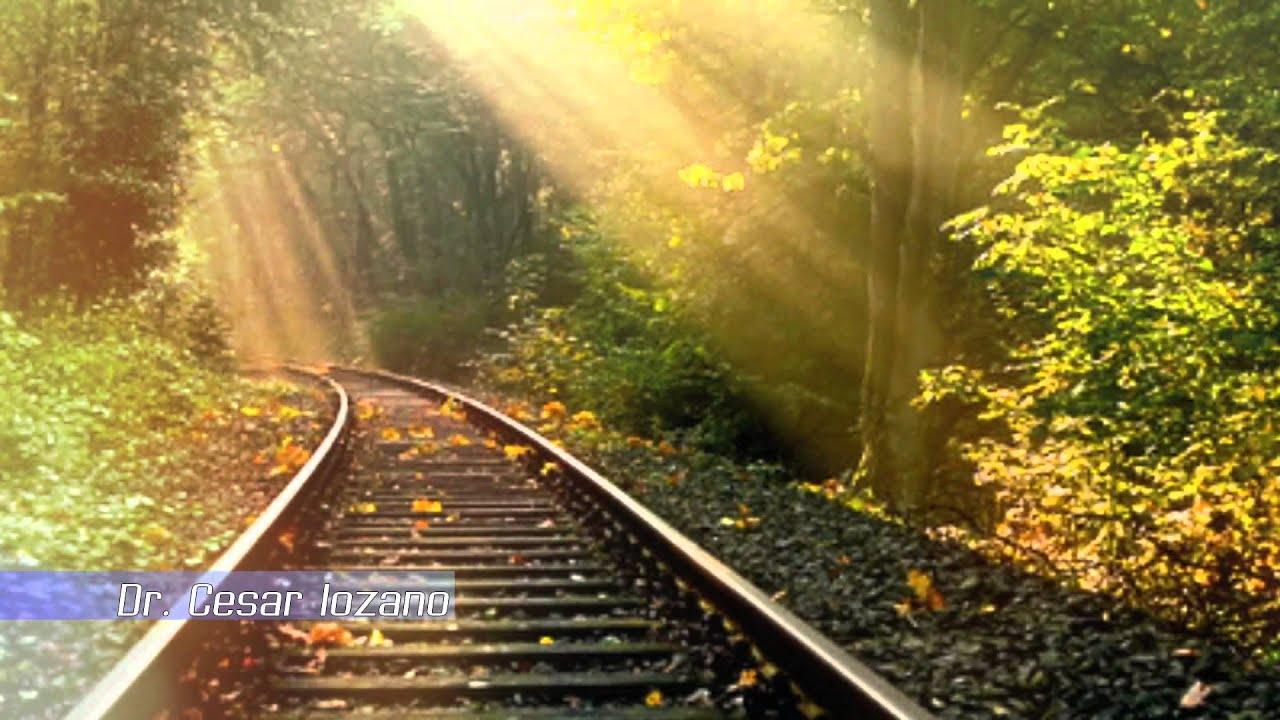 La Tren Vida Reflexion De