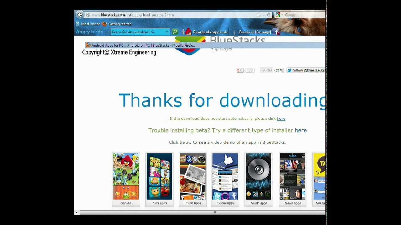 Talking tom cat for laptop windows 7 free download.