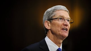 Tim Cook Wise to Focus Apple on Payments, Not TV: Lindzon