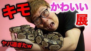 キモかわいい展はこちら http://kimokawaiiten.jp/ ◇チャンネル登録はこ...