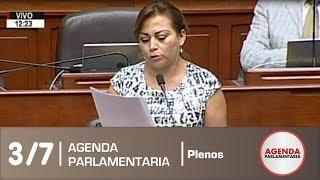 Sesión del Pleno 3/7 (22/03/19)