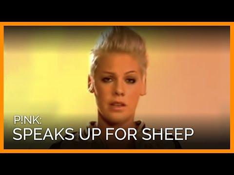 Sheepskin Uggs Peta