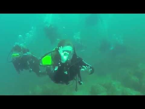 Full Video Shared by Our Divers | Discover Scuba Diving with Top Diving at Puerto Rico de Grand Canaria