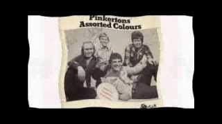Pinkertons Assorted Colours - Look At Me, Look At Me