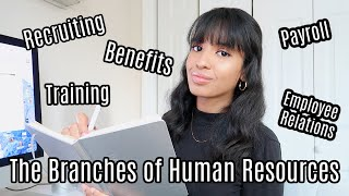 Branches of Human Resources   Working in HR