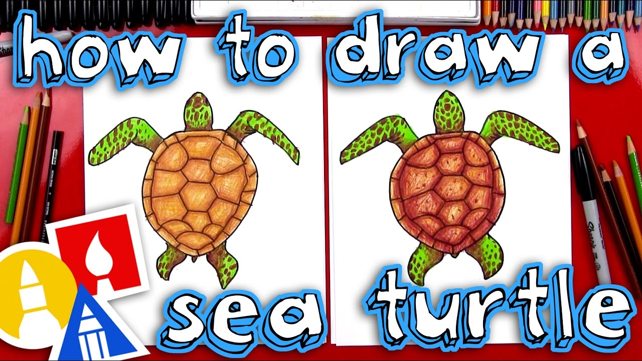 how to draw a realistic sea turtle [ 1280 x 720 Pixel ]