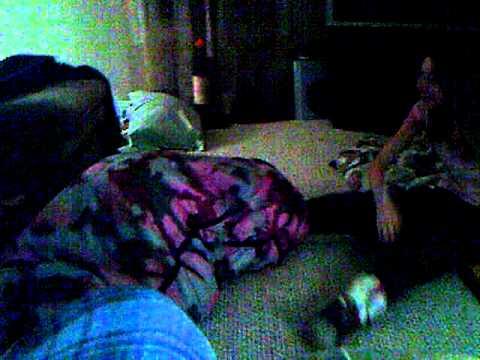 sleeping bag attack