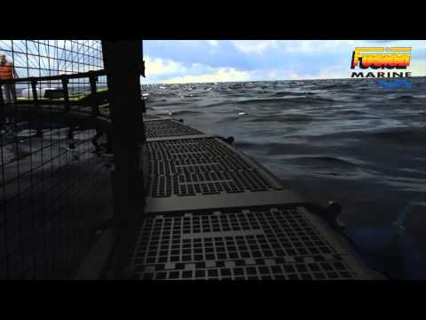 Fusion Marine Fish Farm Fly Through