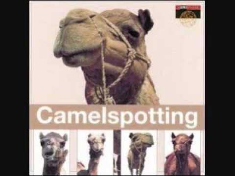 Nadia Moustafa - Law Koona Camelspotting Egypt