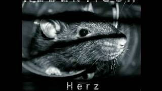 Rebentisch - Herz Zerrissen - Der Biss [Chill Out Rmx by JAN_SOLO] (2009) - Track 8