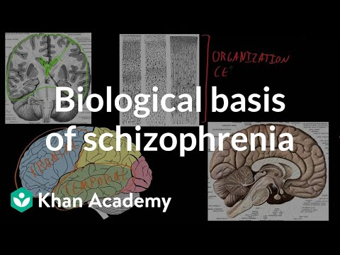 Biological basis of schizophrenia | Behavior | MCAT | Khan Academy