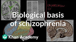 hqdefault - Biological Basis Of Schizophrenia And Depression