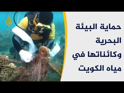 فريق الغوص الكويتي.. ثلاثة عقود من حماية البيئة البحرية  - 15:54-2019 / 1 / 15