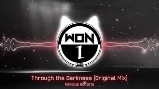 Vinicius Honorio - Through the Darkness (Original Mix)