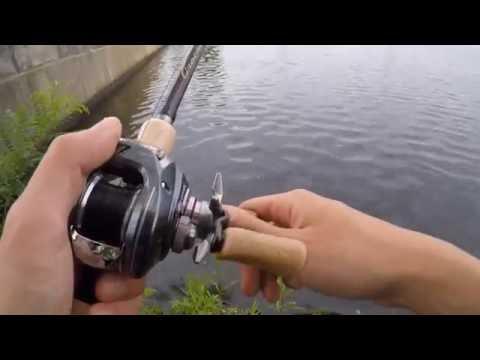 Charles River Bass Fishing