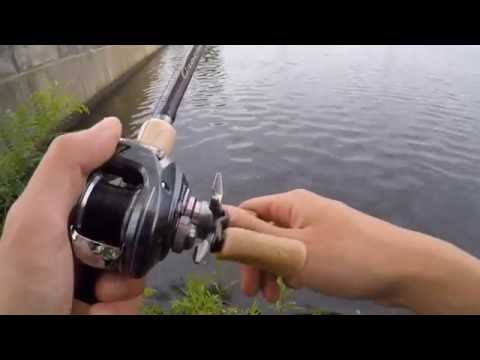 Charles River Bass Fishing
