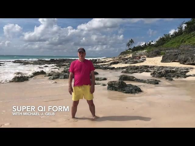 Super Qi form (abridged) on the Beach