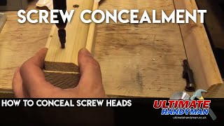 How to conceal screw heads | Screw digger | Plug cutter
