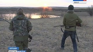 Сезон осенней охоты на Ямале под угрозой(, 2016-08-05T04:11:43.000Z)