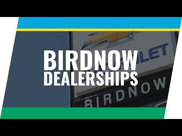 Client Spotlight Series: Birdnow Dealerships