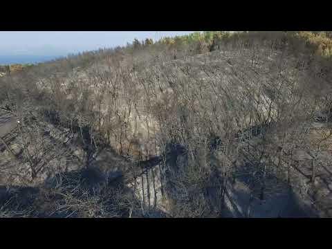 Το drone του zougla.gr πέταξε πάνω από το καμένο δάσος της ανατολικής Αττικής