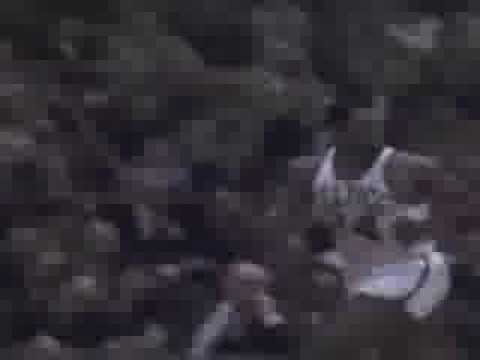 Sam Jones banks two shots over Oscar Robertson