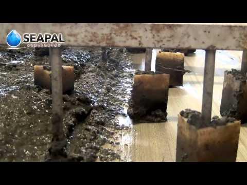 Biosólidos - Documental sobre la Planta de Tratamiento de Aguas Residuales Seapal Puerto Vallarta