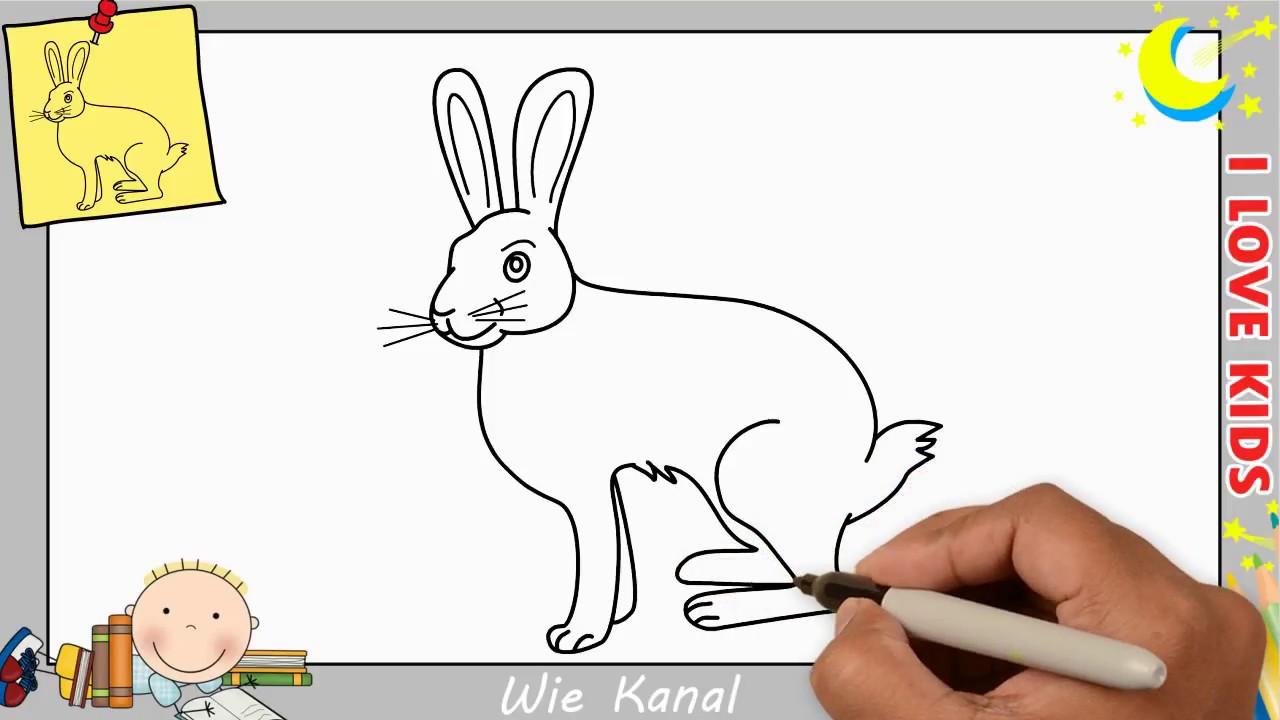 Hase zeichnen schritt f r schritt f r anf nger kinder hase zeichnen lernen youtube - Hase zeichnen ...