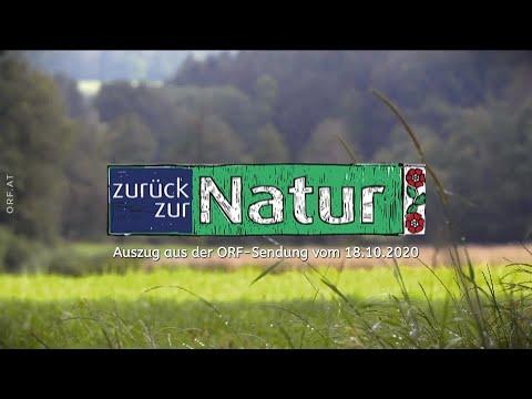 "Zurück zur Natur ""Mattigtal"""