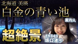 この動画は2月に撮影したものです。 今回は、青い池に 行った時の動画です! 青い池は、 北海道の観光地として とても人気スポットですが、...