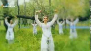 Zabi Estalefi   Pari Chehra New Mast Afghan Song