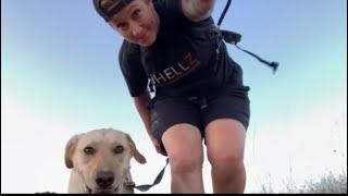 Tucker Time | 1 HR Dogwalk | Ramona