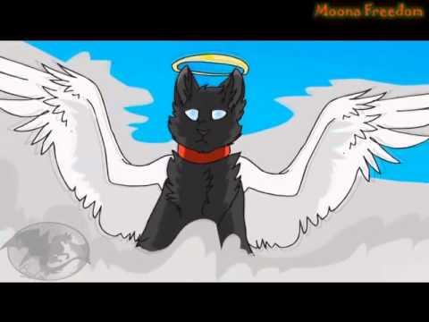 Песня коты воители на русском
