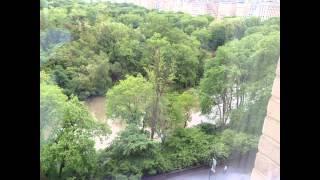 Ritz Carlton Central Park, New York - Deluxe Park View Room