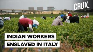 Italy's Secret Slavery: Hundreds of Indians, Mostly Sikhs, Enslaved Under Horrific Conditions