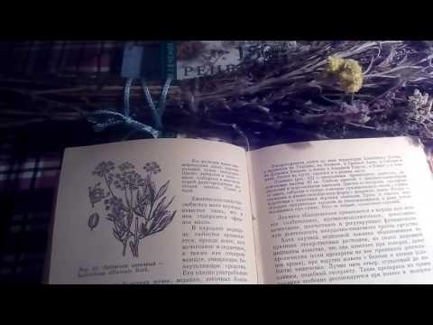 Льнянка обыкновенная: лечебные свойства и применение