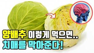 양배추 이렇게 먹으면 치매를 막아준다!(혈액순환과 독소…