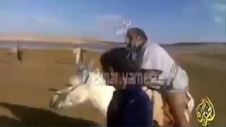 بالفيديو.. أمير قطر السابق يقود حمار ببراعة