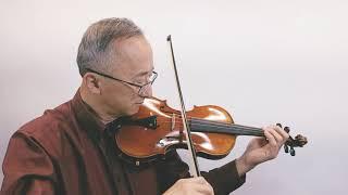 student violin 4/4