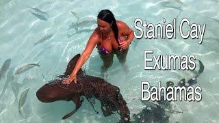Swimming Pigs, Swimming with Sharks Thunderball Grotto Staniel Cay Exumas Bahamas!