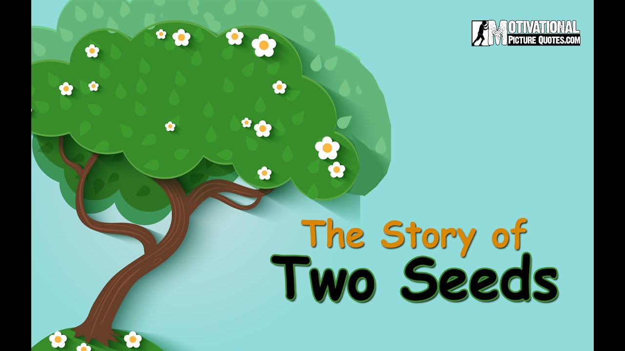 Motivational Short Story Of Two Seeds -Best Inspirational Story about  Positive Thinking for Kids