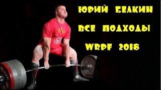 Yury Belkin Юрий Белкин 1015kg 2238lbs WRPF 2018 все подходы