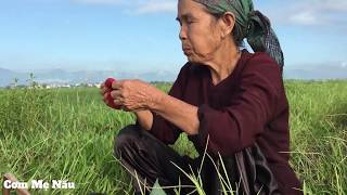 Mẹ ra đông cắt cỏ - Cơm nắm muối lạc xem là nhớ kỷ niệm xưa ( Happy Mother's Day ) Cơm mẹ nấu